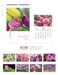 铁环十三张系列  LG19021   花之恋